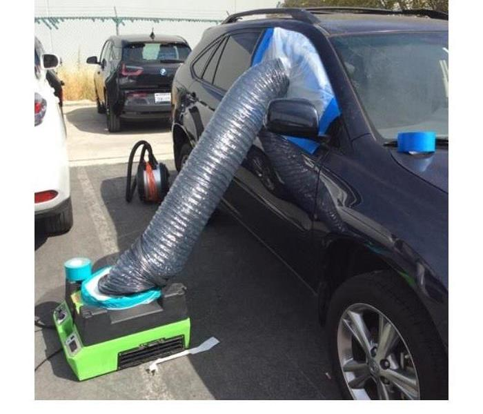 Cleanup Service for Automobiles
