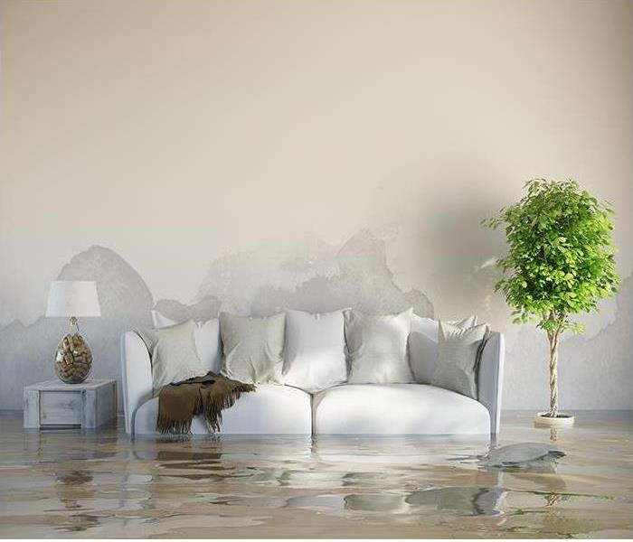 Water Damage Water Damage Overview